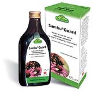 SAMBUGUARD jarabe 175ml. de SALUS