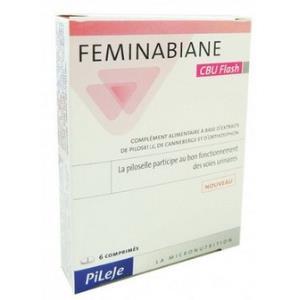 FEMINABIANE confort urinario flash 6comp. de PILEJE